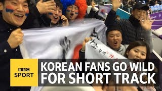 Winter Olympics: Watching short track speed skating in South Korea - BBC Sport