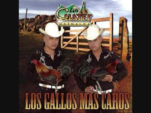 Los Cuates De Sinaloa-El Chango De Mi Vecina