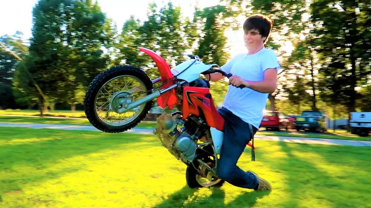 a-bird-was-living-in-my-new-dirtbike