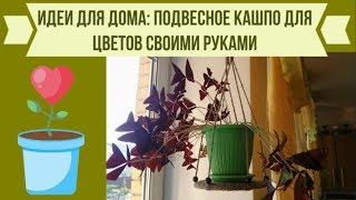 видео Как украсить комнату с помощью кашпо для цветов?