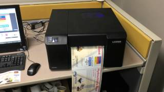 Primera LX2000 printing 8x12 chemical label with ink cost