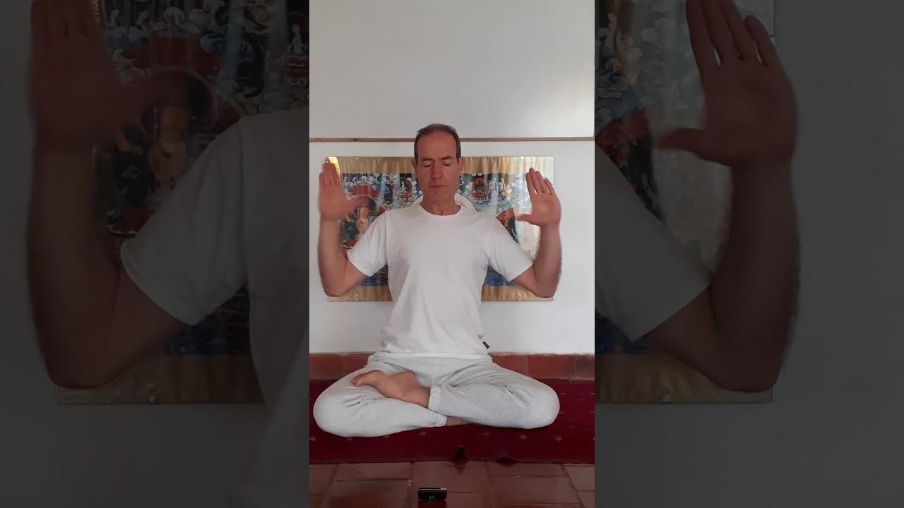 Meditación de 9 minutos cuerpo sano y claridad mental