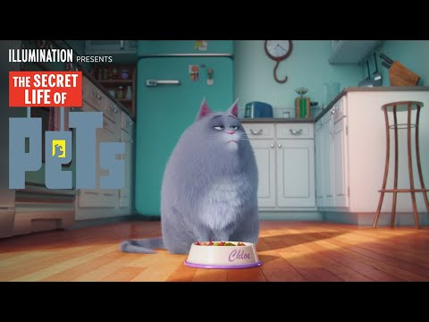 The Secret Life of Pets - Meet Chloe (HD) - Illumination