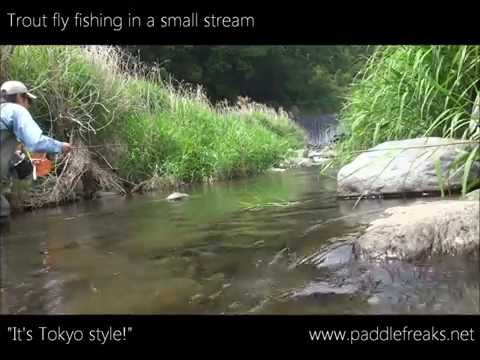 Trout fly fishing in small stream, Tokyo area.
