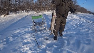 Вот это рыбалка!!! Кунджа,Щука, Голец! озеро Невское, р. Длинная, о.Сахалин! Бешеный клев!