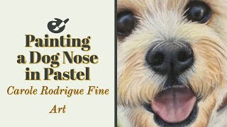How to Paint a Dog's Nose in Pastels (in Real Time!)