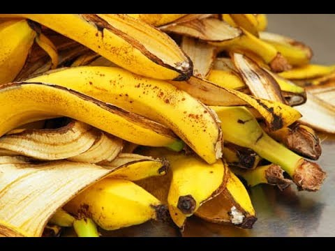 You Will Never Throw Away Banana Peels After Watching This Youtube