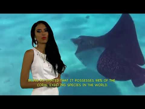 MISS ECO VENEZUELA TOURISM VIDEO