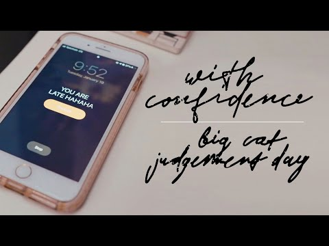 Смотреть клип With Confidence - Big Cat Judgement Day