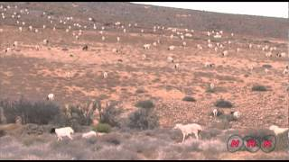 Richtersveld Cultural and Botanical Landscape (UNESCO/NHK)