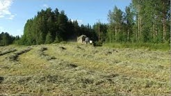 Myydään irtoheinää Virroilla - Heinän kokoominen vanhalla noukinvaunulla kuivuriin.