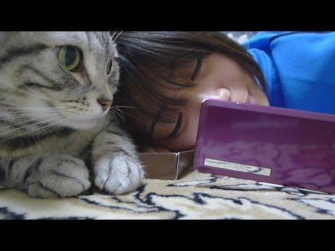 姪っ子に寄り添う猫 - A cat and niece.