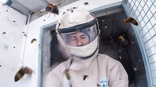 MOST STRESSFUL EXPERIENCE (HORNETS ATTACK)