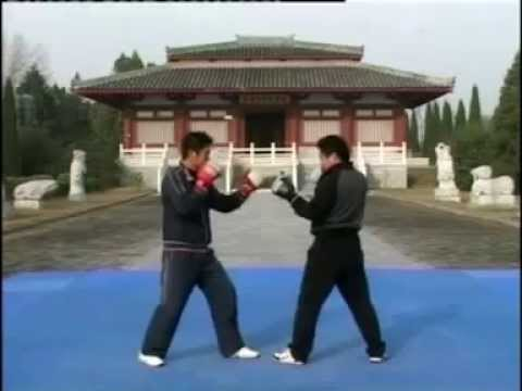 学习散打/散手- 散打教程/教学 2- Sanshou Tutorial 2 (Chinese Language).