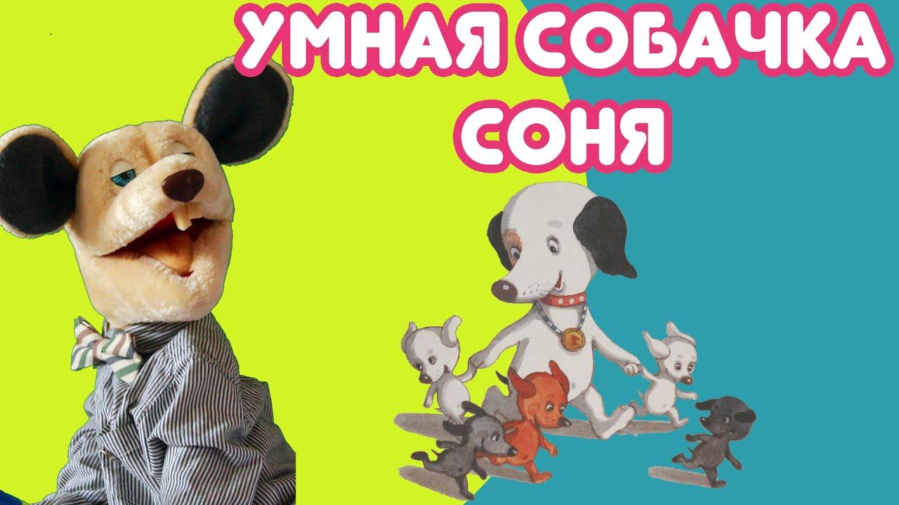 Крыся Лёвкин - продолжение книги Умная собачка Соня ...