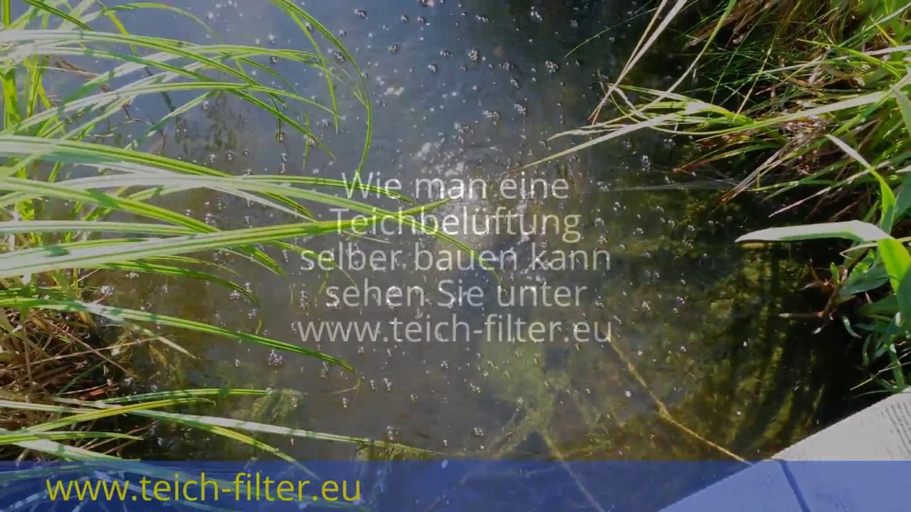 Teichbeluftung Fur Sommer Und Winter Selber Bauen Bauanleitung