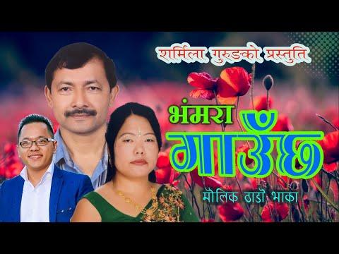 New Nepali Typical Salaijo Song 2074 Radha Salaijo By Narayan Rayamajhi & Sharmila Gurung