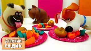 Детский сад Капуки Кануки: 2 смена - Тайная жизнь домашних животных