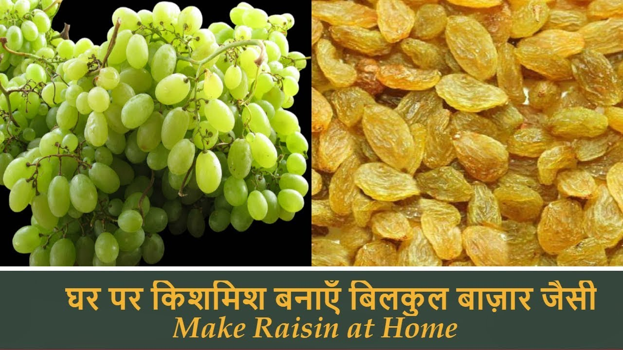 How to Make Raisin at Home