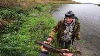 Рыбалка на Горной Реке (день второй.)