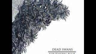 Watch Dead Swans Lines Of Seperation video
