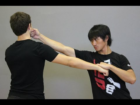 Bruce Lee Jeet Kune Do Trapping Flow Techniques