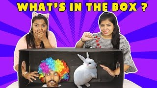 WHAT'S IN THE BOX 2 COMPETITION !!!! OMG REAL ANIMALS