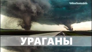 Ураган. Аномальная погода. Климатические изменения. Выпуск 98