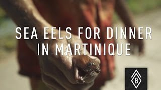 Martinique flavors : Would you eat sea eels?