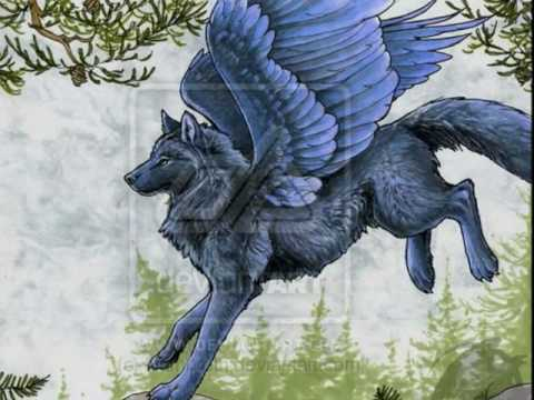 Ice Wolf With Wings Winged Wolves -Fly- - ...