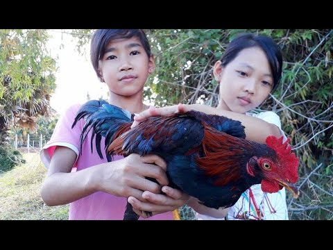 Amazing Grilled Chicken | Two Smart girls Cooking Style | Traditional Made Easy Food In Cambodia