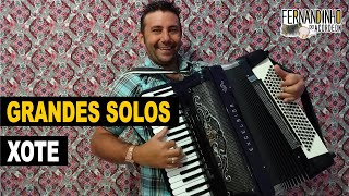 Solos de xote - sucessos de Luiz Gonzaga - Fernandinho Do Acordeon - Instrumental sanfona acordeon