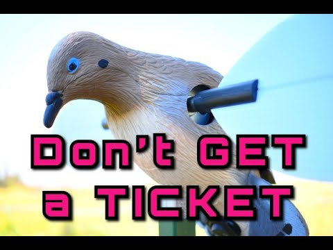 DOVE HUNTING Information:  Don't Get A TICKET