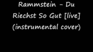 Rammstein - Du Riechst So Gut (instrumental cover)