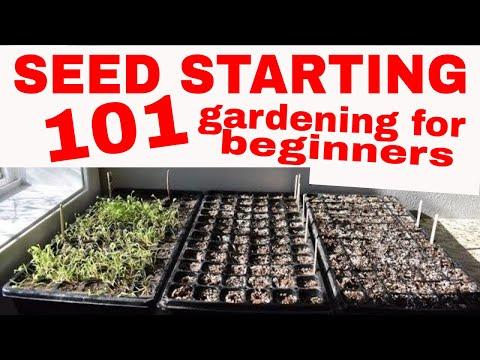 ORGANIC GARDENING–Seed Starting 101