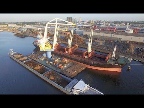 Westpoort Sonthaven Westhaven Suezhaven Bospurushaven