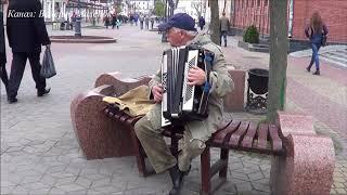 Тум-балалайка! - красивое исполнение на аккордеоне! Sity! Street! Music!