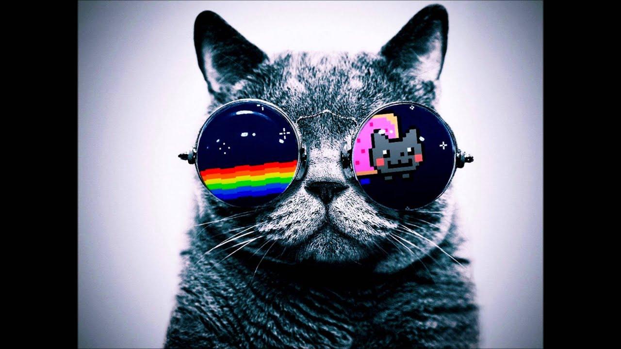 Cat Nyan Cat Sunglasses