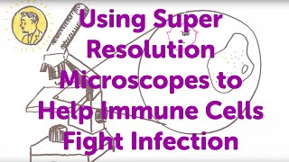 Minute Lecture: Using Super Resolution Microscopes to Help Immune Cells Fight Infection