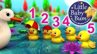 Five Little Ducks | Nursery Rhymes | HD Version from LittleBabyBum