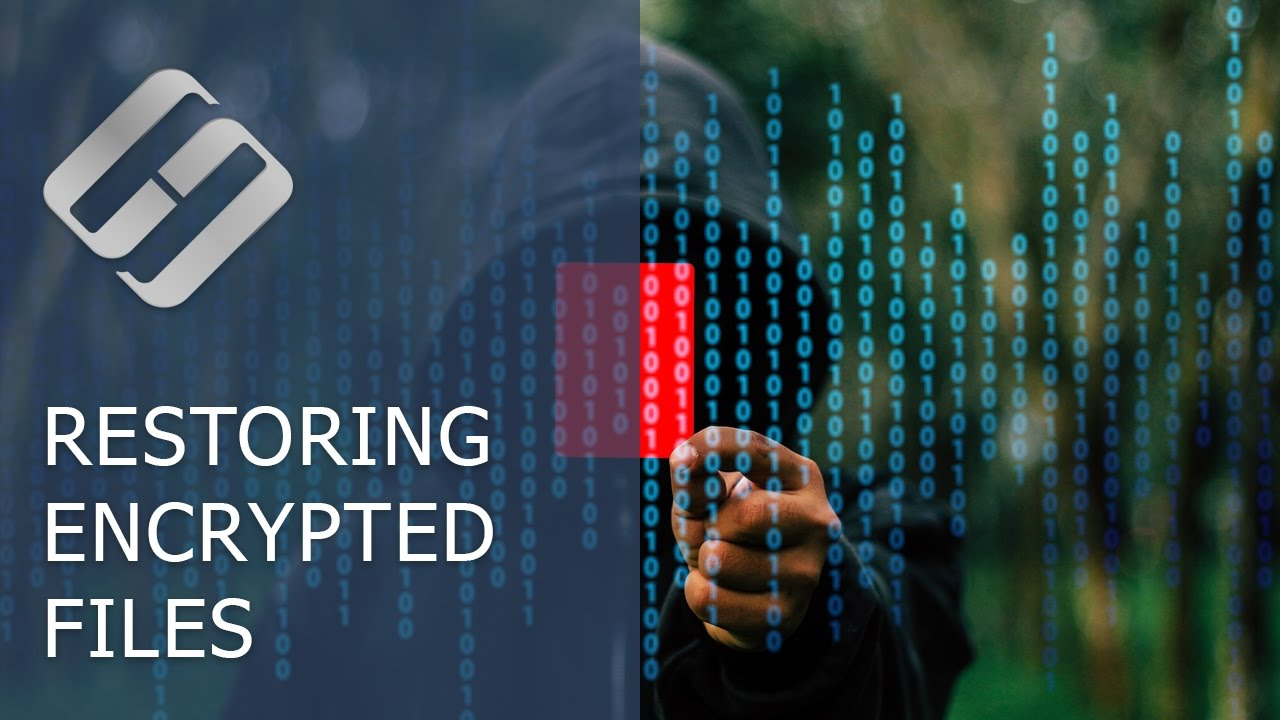 Did a Ransomware Virus Encrypt Your Files? Are You Looking For Ransomware  Decryption Tools? ☣️🚫📁
