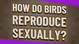 How do birds reproduce sexually?