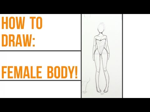 How to draw female anatomy!~ Step-By-Step~