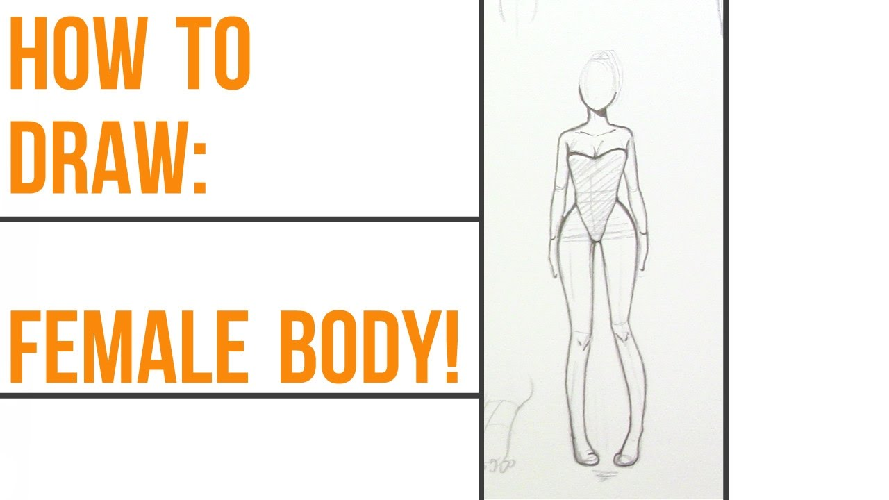 How to draw female anatomy!~ Step-By-Step~ - YouTube