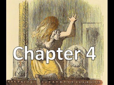Audiobook |Through the Looking Glass Chapter 4 | Tweedledum and Tweedledee