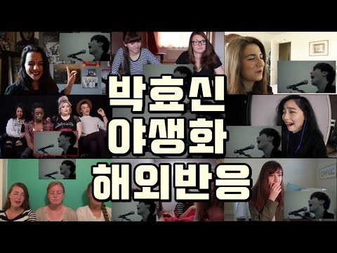 (Kpop Reaction Mashup/케이팝 해외반응) 박효신(Park Hyo Shin) - 야생화(Wild Flower)