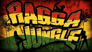RAGGA JUNGLE - Drum n Bass Mix (v.2)