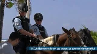 Des cavaliers et des chevaux au service de la sécurité !