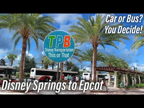 Disney Transportation This or That: Disney Springs to Epcot