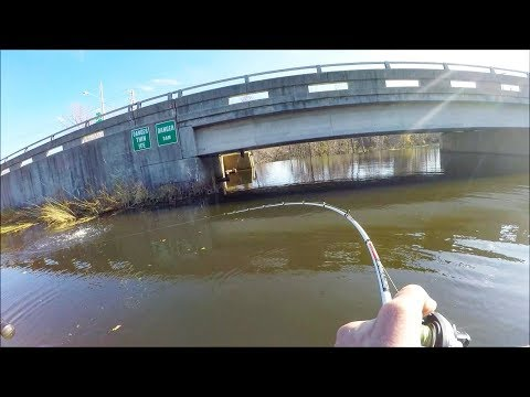 I Found the BEST SPOT!! Incredible Pike Fishing